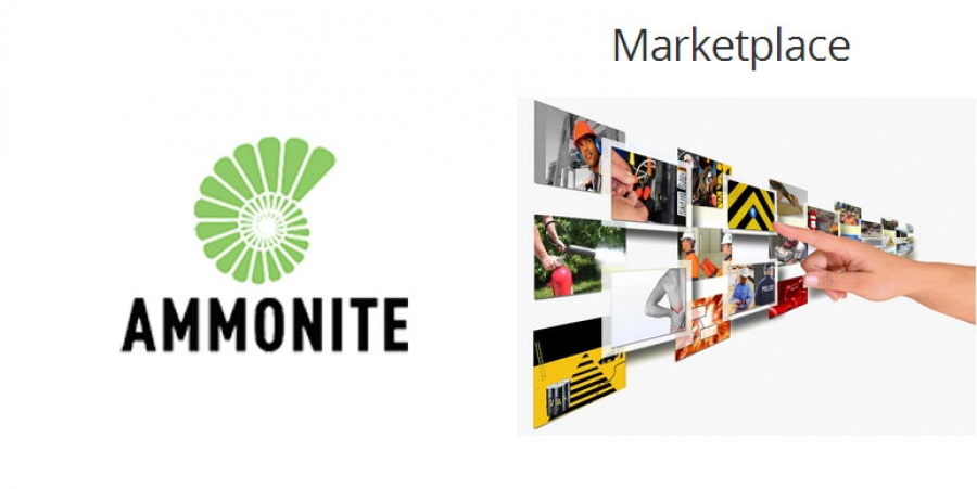 ammonite marketplace